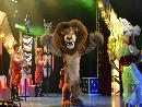 Madagascar LIVE! It